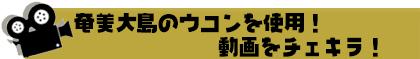 奄美大島のウコンを使用!